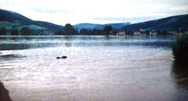 Das Foto wurde 1981 im Bereich der heutigen Füßgänger- und Radfahrerbrücke mit Blick nach Hoheneiche aufgenommen.